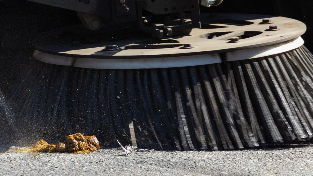 Calgary Stampede Parade Street Sweeper Poo