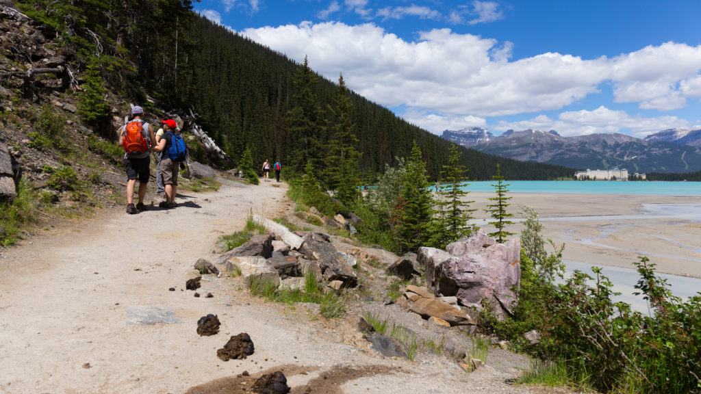 Horse Poo Trail to Lake Louise