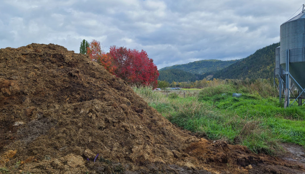 Mountain of Poo in Fall Colours